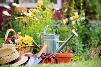 Petits travaux de bricolage et jardinage
